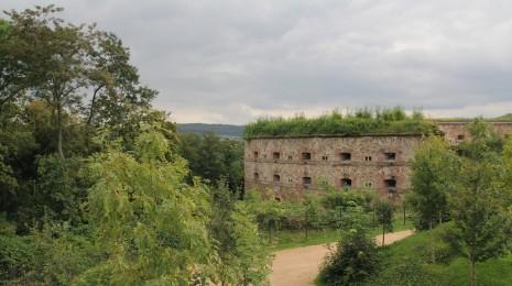 20140901 03 Schloss Ehrenbreitstein (79)